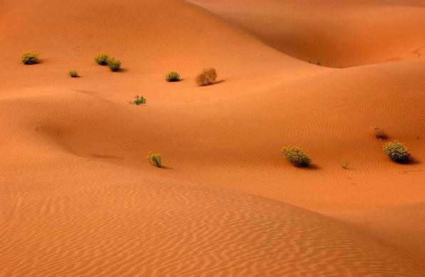 腾格里沙漠在哪_怎么去腾格里沙漠