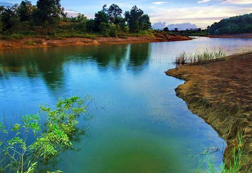 美!深圳居然有全国最大的湿地公园