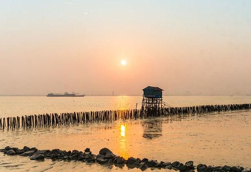 食神也爱去!广东有个美味的海鸥岛